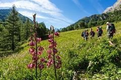 Hautes-Alpes Bertrand Bodin BD